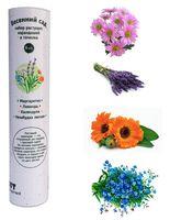 """Набор для выращивания растений """"Растущий карандаш. Весенний сад"""" (графитные; 8 шт.)"""