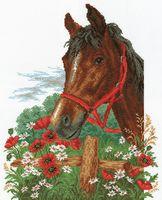 """Вышивка крестом """"Лошадь в маках"""""""