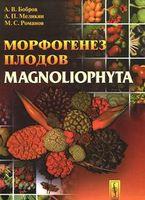 Морфогенез плодов Magnoliophyta