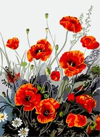 "Картина по номерам ""Яркие маки"" (400х500 мм)"