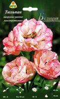 """Тюльпан махровый ранний многоцветковый """"Белиция"""""""