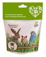 """Набор для выращивания """"Универсальная трава для животных"""""""
