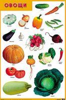 Развивающие плакаты. Овощи