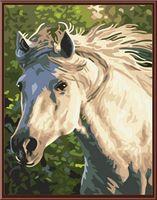 "Картина по номерам ""Лошадь №2"" (300х400 мм)"