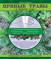 Пряные травы в вашем саду