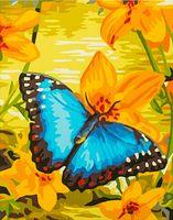 """Картина по номерам """"Синяя бабочка"""" (300х400 мм)"""