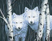 "Картина по номерам ""Два белых волка между берез"" (410х510 мм)"