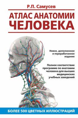 привес анатомия 12 издание скачать
