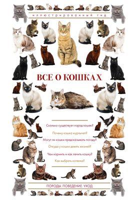 Книги про кошек на OZ.by, купить книгу о котах в Минске в интернет ...